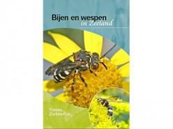 Bijen en wespen in Zeeland