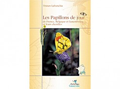 Les Papillons de jour de France. Belgique et Lux.