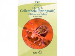 A Key to the Collembolla (Springtails) of Britain