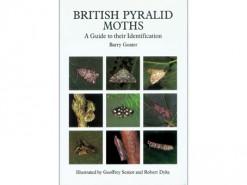 British Pyralid Moths