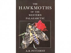The Hawkmoths of Western Palaearctic