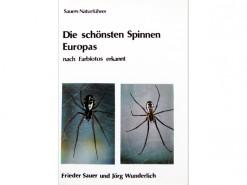 Die schonsten Spinnen Europas