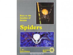 Keys to the families of British Spiders