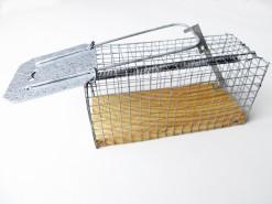 Vangkooi - klein model