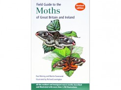 Field Guide to the Moths of GB & Ireland