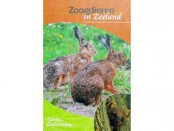Zoogdieren in Zeeland