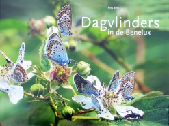 Dagvlinders in de Benelux