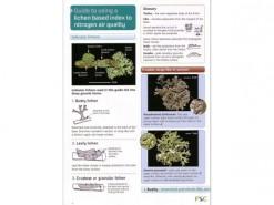 Luchtkwaliteit met behulp van korstmossen: Nitrogen air quality