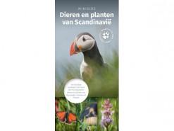 KNNV10 minigids dieren en planten Scandinavie