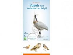 KNNV14 Minigids vogels van NL en B
