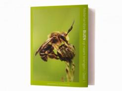 jeugdbond nederlandse bijen