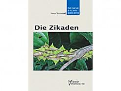 NBB11Die Zikaden