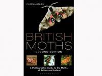 9-003-british-moths