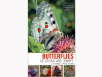 9.489 butterflies-of-britain-and-europe