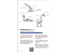 KNNV45 Zakgids Vogels van Nederland en Belgie binnen1