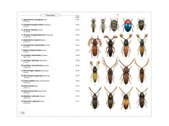 8.231a Phytophagous beetles of Europe vol. 1 binnen1