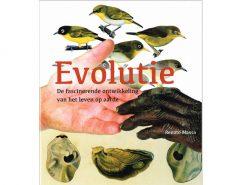 Aanbieding30 Evolutie