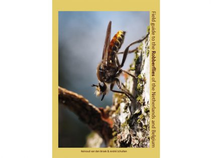 JB01a Fieldguide-Robberflies