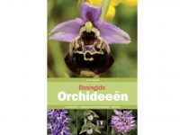basisgids-orchideen