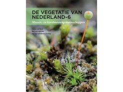 vegetatie-van-Nederland-6--Mossen-en-korstmossen