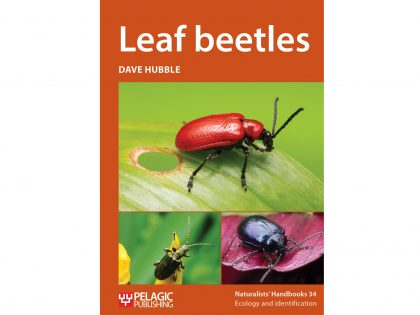NH34 Leaf beetles