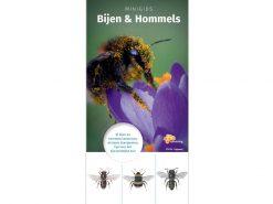 knnv63 Minigids Bijen en Hommels