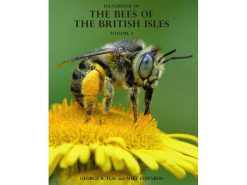7.294 Bees of British Isles vol.2