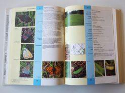 KHB219 Ecologische atlas Dagvlinders binnen