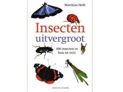 Aanbieding72 Insecten uitvergroot