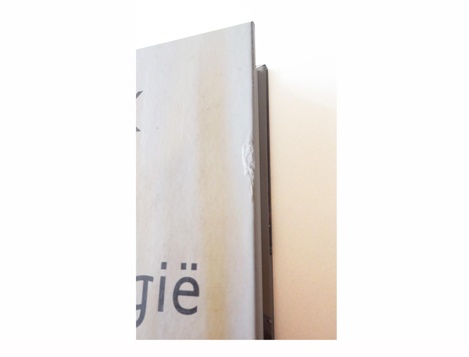 schade-detail-handboek-vogels