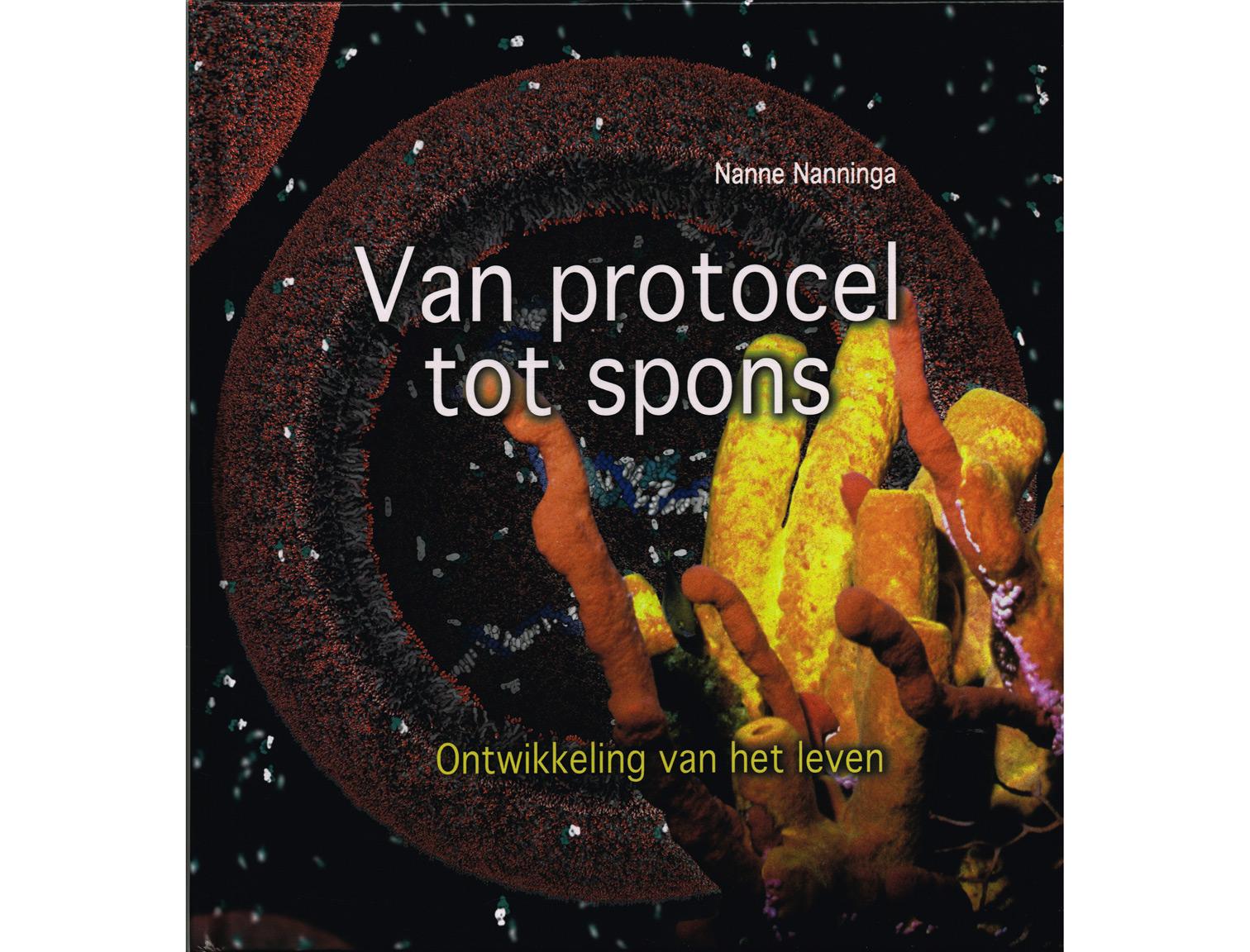 protocel-tot-spons