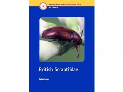 British Scaptiidae 1