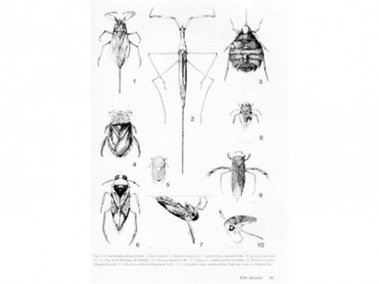Aquatic Insects of North Europe  vol