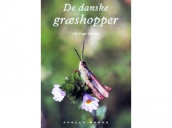 Danske groeshoppers (Danish Grasshoppers)