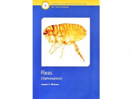 Fleas – Siphonaptera 1