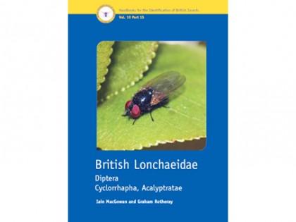 British Lonchaeidae 1