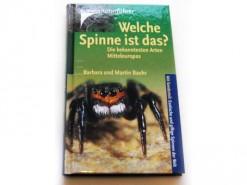 Welche Spinne ist das ?