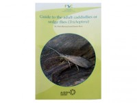 Guide to the adult caddisflies (Trichoptera)