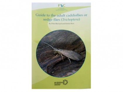 Guide to the adult caddisflies (Trichoptera) 1