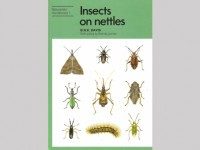 Insects on nettles
