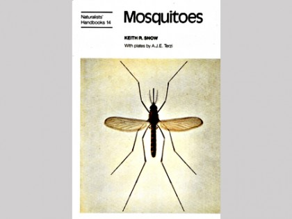 Mosquitoes 1
