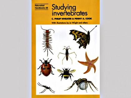 Studying invertebrates 1