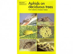Aphids on deciduous trees