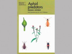Aphids predators