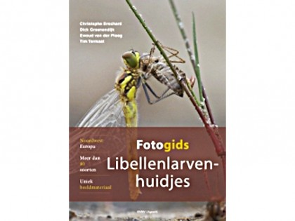 Fotogids Libellenlarvenhuidjes 1