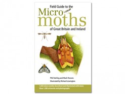 Field Guide to the micro moths HB