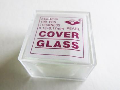 Dekglaasjes 24x24mm
