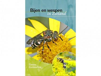 Bijen en wespen in Zeeland 1
