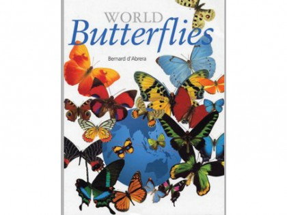 World Butterflies 1