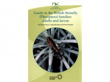 Guide to the British Stonefly (Plecoptera)families 1